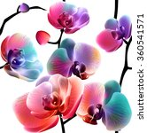 vector orchids. seamless... | Shutterstock .eps vector #360541571
