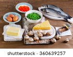 food sources of vitamin d.  | Shutterstock . vector #360639257