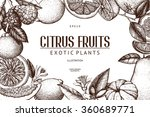 vintage template. ink hand... | Shutterstock .eps vector #360689771