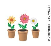 spring flowers in plant pots.... | Shutterstock .eps vector #360796184