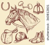 hand drawn horse with bridle... | Shutterstock .eps vector #360812831