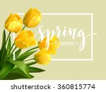 Spring Text With  Tulip Flower...