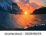 Natural Marine Design Postcard...