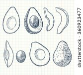 doodle avocado set | Shutterstock .eps vector #360923477