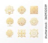 Vector Set Of Abstract Golden...