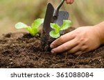 close up farmer hand planting... | Shutterstock . vector #361088084