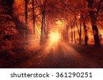 autumn landscape with sun light ...   Shutterstock . vector #361290251