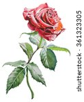 illustration with  red  rose.... | Shutterstock . vector #361323305