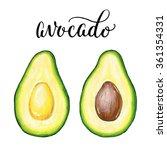 hand drawn avocado sketch ... | Shutterstock . vector #361354331