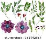 set of watercolor leaves ... | Shutterstock . vector #361442567