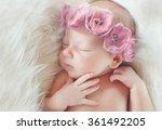 close up beautiful sleeping... | Shutterstock . vector #361492205