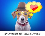 smart beautiful dog with icon... | Shutterstock . vector #361629461