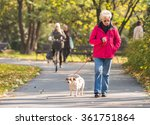 Stock photo old woman with a dog in autumn park 361751864