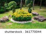Marigolds Flowers In Garden