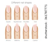set of different shapes of... | Shutterstock .eps vector #361787771
