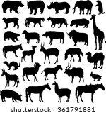 big animal set | Shutterstock .eps vector #361791881
