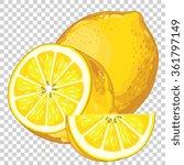 fresh lemon vector isolated on...   Shutterstock .eps vector #361797149