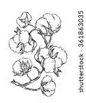 hand made vector sketch of... | Shutterstock .eps vector #361863035