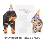 dog and cat in birthday hats... | Shutterstock . vector #361867697