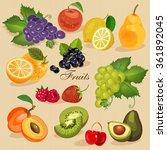 harvest juicy fruit and berries ... | Shutterstock .eps vector #361892045