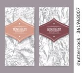 set of 2 labels with peppermint ... | Shutterstock .eps vector #361963007