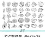 set with various seashells.... | Shutterstock .eps vector #361996781