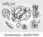 hand drawn set of vegetables  ... | Shutterstock .eps vector #362057504