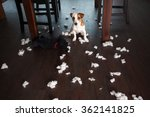 pampering dogs. naughty puppy.... | Shutterstock . vector #362141825