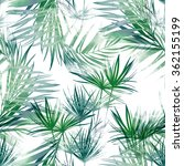 leaves of tropical plants. hand ... | Shutterstock . vector #362155199