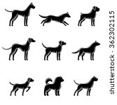 dogs set. vector | Shutterstock .eps vector #362302115