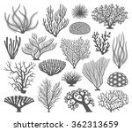 collection of many different... | Shutterstock .eps vector #362313659