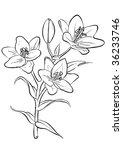 lilies.  raster version of... | Shutterstock . vector #36233746
