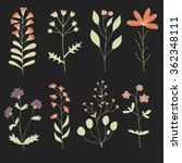 floral set. hand drawn flowers... | Shutterstock .eps vector #362348111