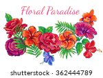 hand drawn tropical flowers ... | Shutterstock .eps vector #362444789