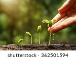 agriculture. growing plants.... | Shutterstock . vector #362501594