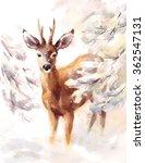watercolor deer hand painted... | Shutterstock . vector #362547131
