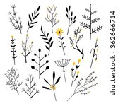 plants  flowers and branches.... | Shutterstock .eps vector #362666714