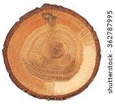 Cracked Oak Split With Bark...
