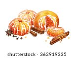 mandarin with spices... | Shutterstock . vector #362919335
