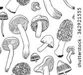 hand drawn vector pattern.... | Shutterstock .eps vector #362921555