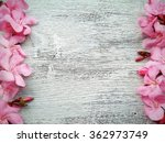 Pink Flower Border And Frame O...
