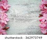Pink Flower Border And Frame O...