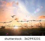 freedom concept  silhouette of... | Shutterstock . vector #362993231