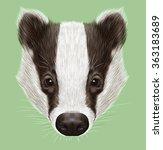 illustrated portrait of badger. ... | Shutterstock . vector #363183689
