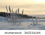 frozen landscape from baltic... | Shutterstock . vector #363216164