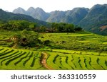 Rice Terraces In The Pu Luong...