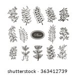 collection of hand drawn branch.... | Shutterstock .eps vector #363412739
