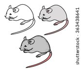 the gray mouse and its contours   Shutterstock .eps vector #363438641