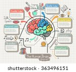 the human brain diagram doodles ... | Shutterstock .eps vector #363496151