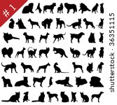 Stock photo set of different pets silhouettes also in my portfolio you can find vector version of this 36351115